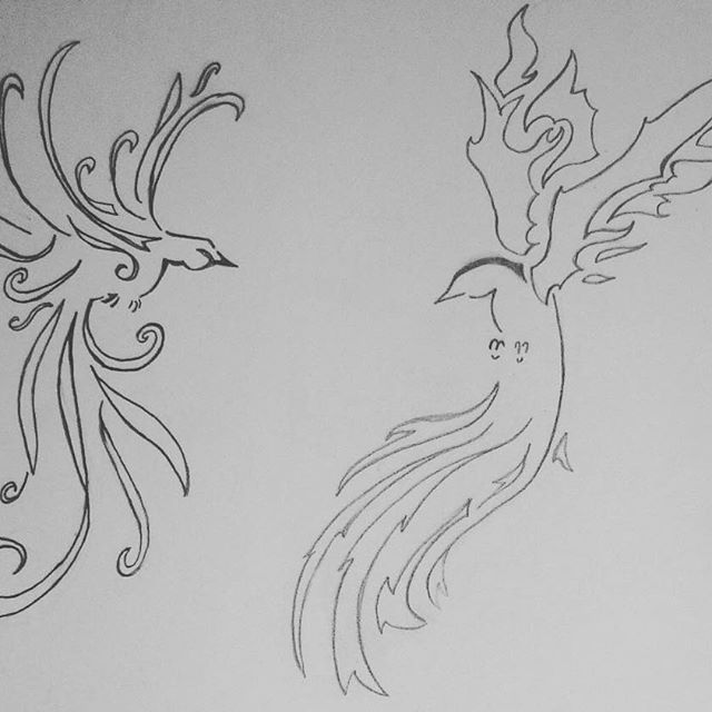 Saw an amazing sketch of two birds, one of fire and one of water and I tried to sketch them.     #sketch #drawing #bird #phoenix #water #fire #waterbird #firebird