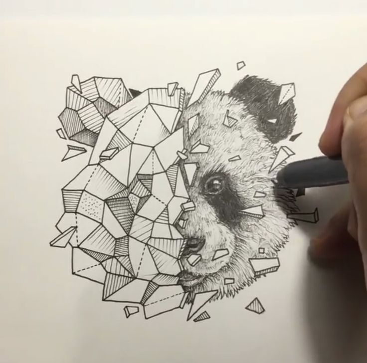 Geometric Beasts | Panda                                                                                                                                                                                 More