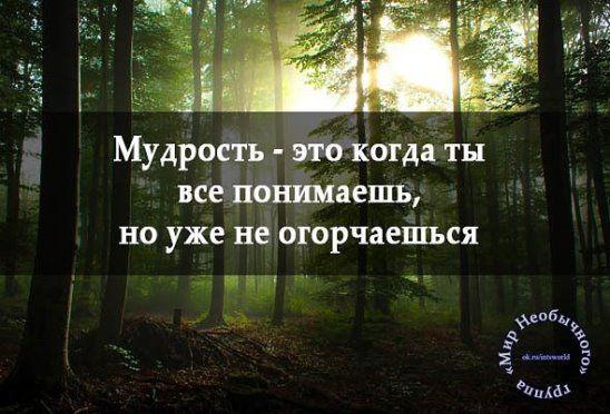 (99) Однокласники