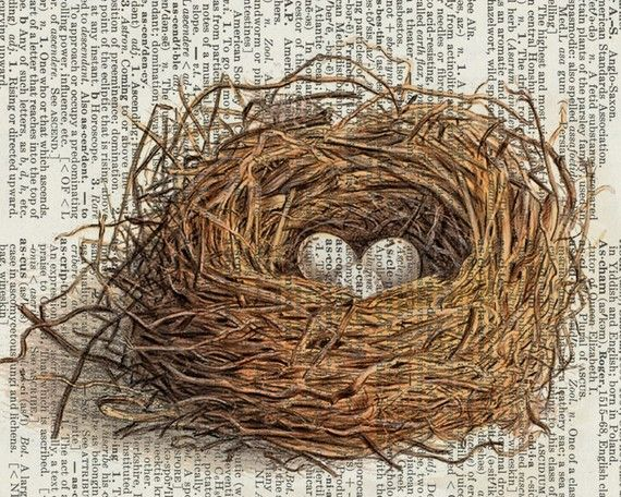 Nest on dictionary page. - FauxKissBirds Nests, Interesting Artworks, Vintage Wardrobe, Three Eggs, Vintage Bird, Eggs Art, Vintage Artworks, Prints, Nests Artworks