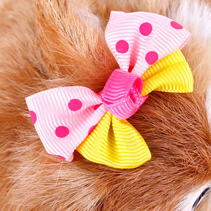 Small Dog Grooming Bows Clip Hair Accessories Dog Tie Necktie Pet Bow Adjustable Puppy Clips Pajarita Perro Pet Supplies 50M0048 #Affiliate