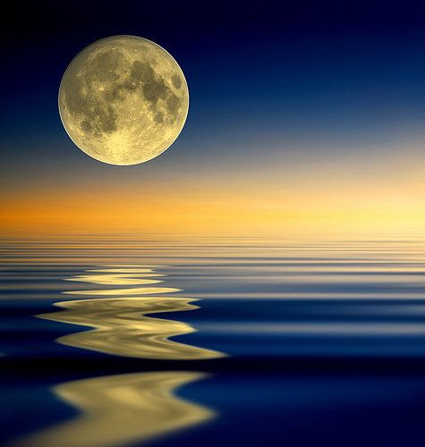 moon reflected