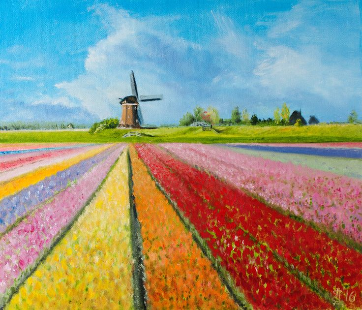 Tulip Field in Holland hand-painted oil painting 35x30 cm 13.8x11.8 inches original handpainted by ArtforInterior on Etsy
