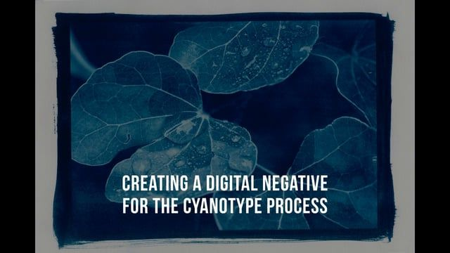 This video tutorial introduces a basic method for making digital negatives for the cyanotype process.