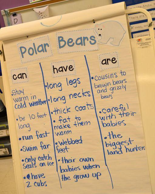 Arctic Animal Interactive Writing: Peek at my Week | Mrs. Wills Kindergarten | Bloglovin'