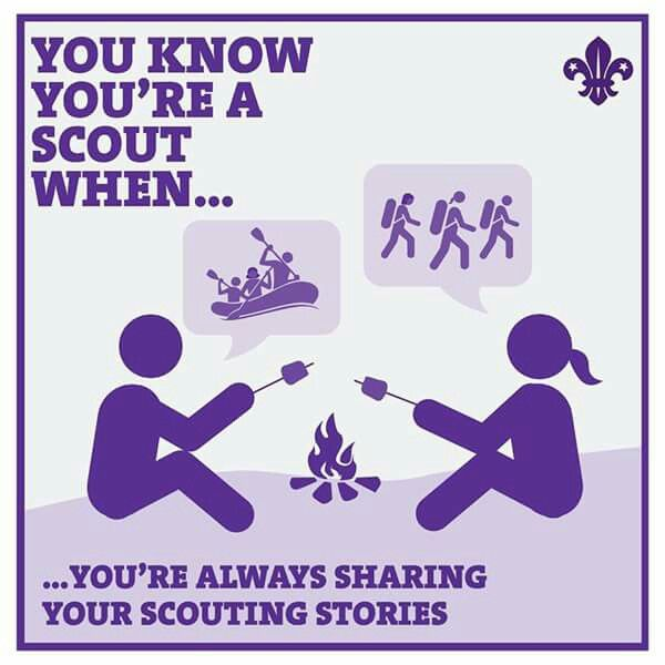 Boy Scout Essay With Quotes: 127 Best Camping Funnies Images On Pinterest