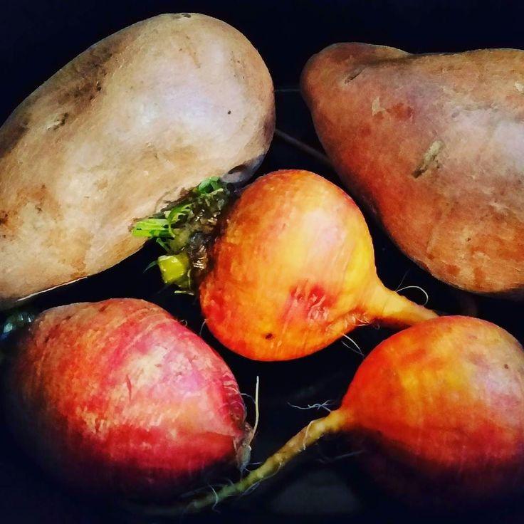 Beets and Sweet Potatoes #beets #sweetpotatoes #eatyourveggies #cleaneating #whatsfordinner #eatcleantraindirty #mealprepmonday #paleo by trainingwithlindsay