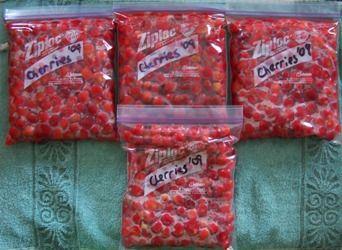 Freezing Cherries #homefoodpreservation #victoriocherrypitter