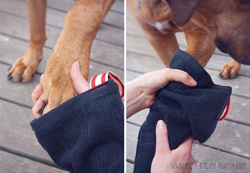 designer Dog I Y  london DIY Mud outlet Puppy discount Mittens Easy