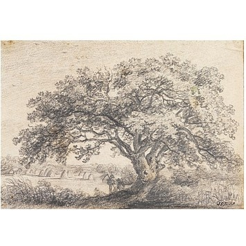 John Constable advised we do portraits of trees.