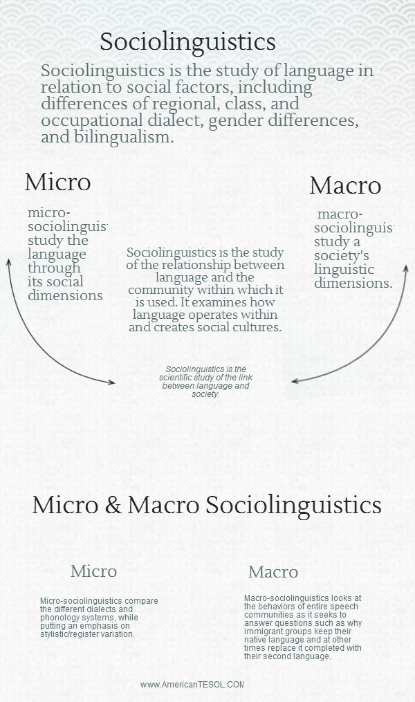 Guide To Sociolinguistic Infographic Cast Linguistic Study Speech And Language Dissertation Examples Example