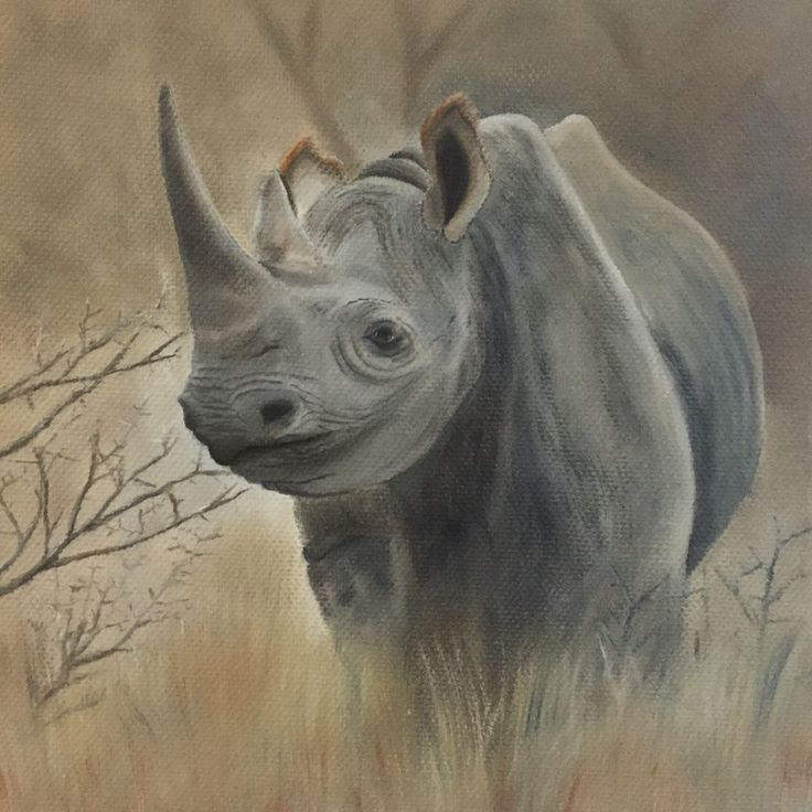Black rhino, critically endangered, oil on canvas