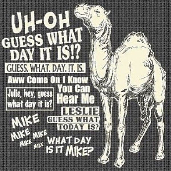 Hump Day Quotes