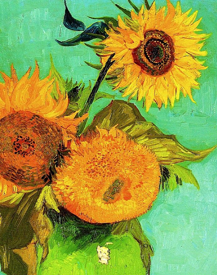 how to draw vincent van gogh sunflowers step by step