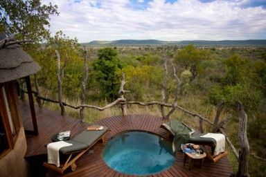 Madikwe Lodge - [Plunge pool and deck view]  North West Province - Africa