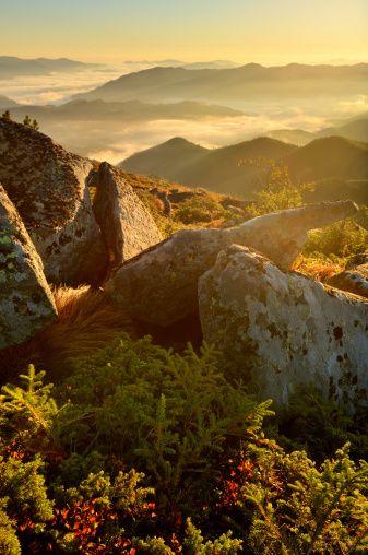 Bright morning in the Carpathian Mountains, Ukraine. #ukraine #nature #carpathian