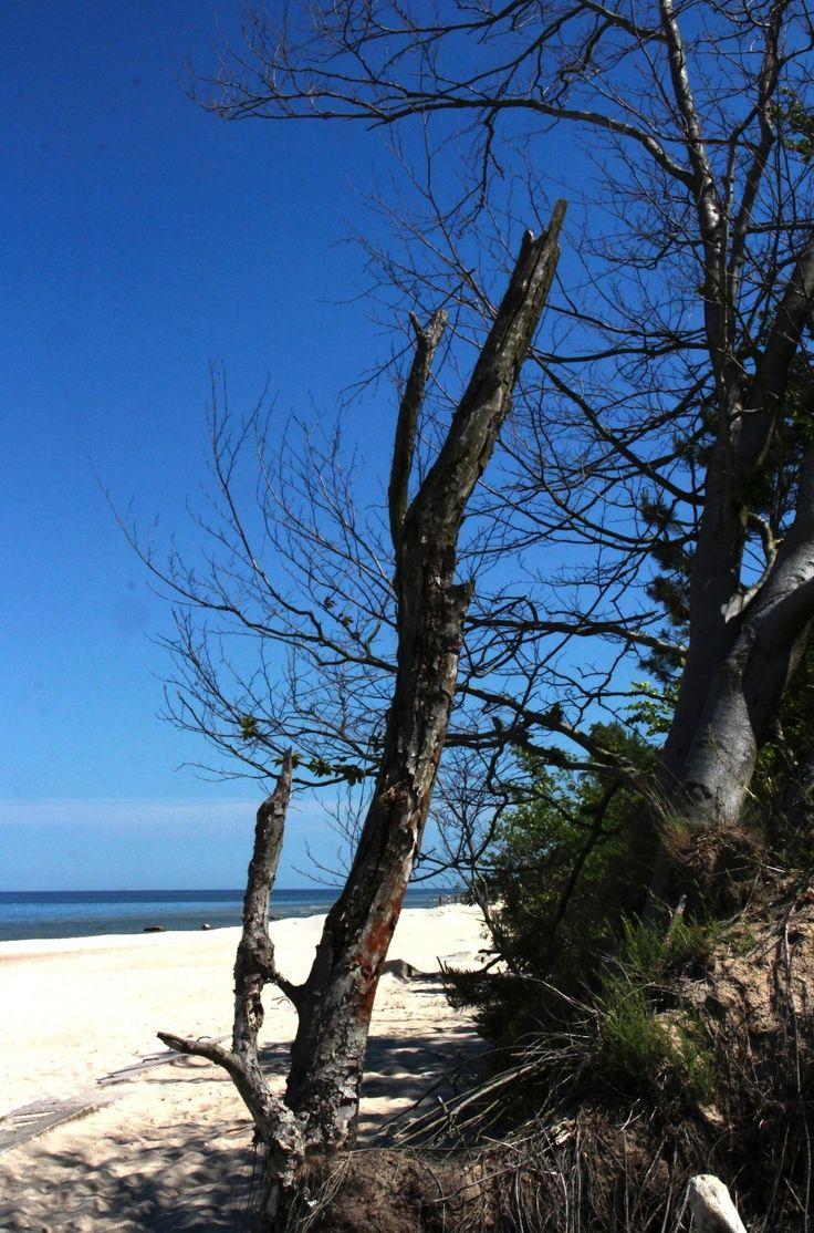 Beach of Międzyzdroje