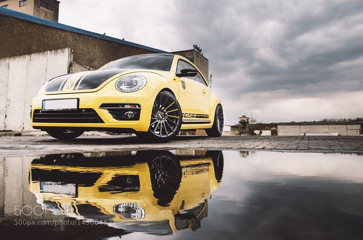Beetle GSR by MarioFrigge