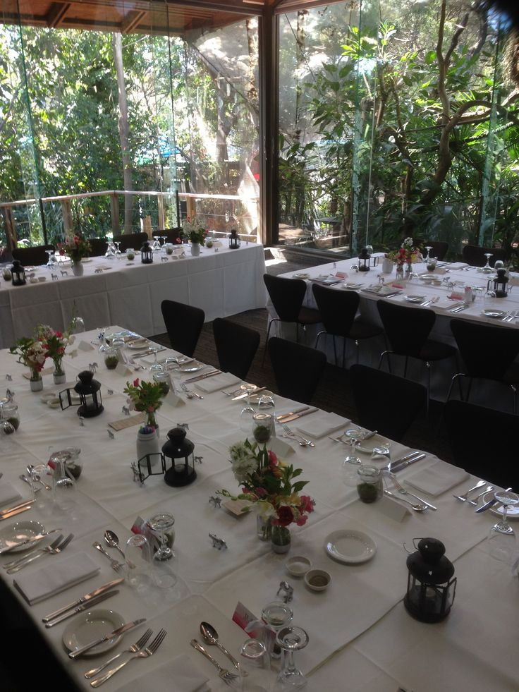 Melbourne Zoo Events. Wedding in Rainforest Room. Elegant animals theming!