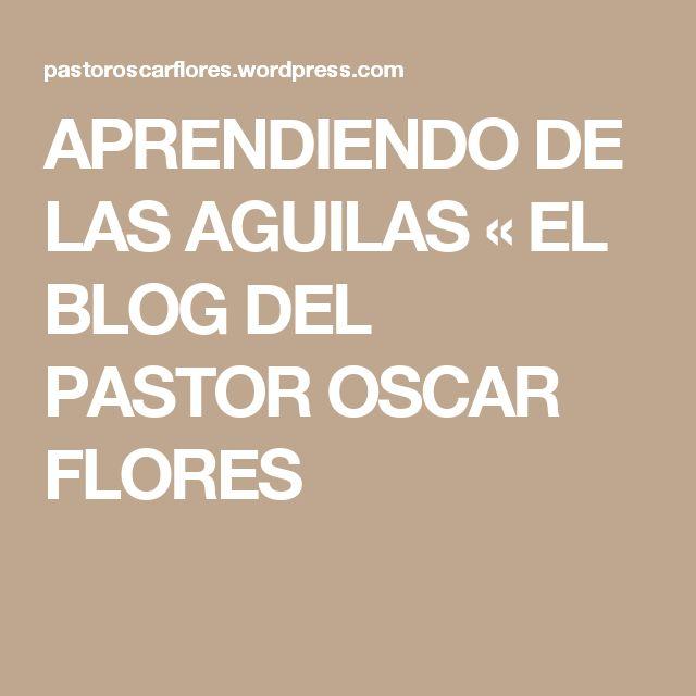 Aprendiendo De Las Aguilas El Blog Del Pastor Oscar Flores Aguila Libro De Proverbios Remedios De Belleza Natural