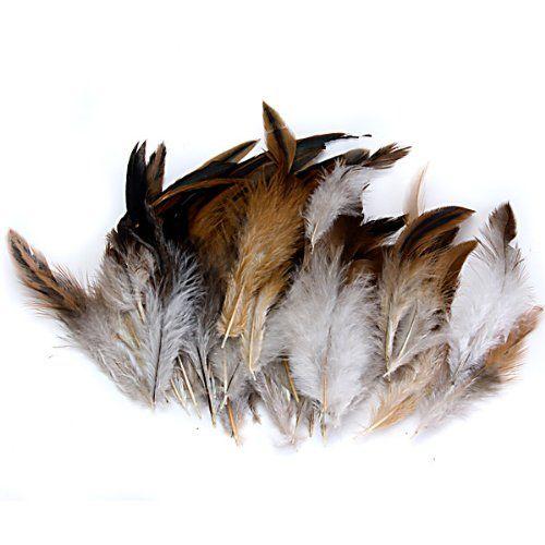 Natürlich Dekoration Hahn Hahn Feder-Idee für Kostüme, Hüte, Zuhause,Dekor,usw. Unbekannt http://www.amazon.de/dp/B008TK2WEA/ref=cm_sw_r_pi_dp_8sYVub0FRGJ68