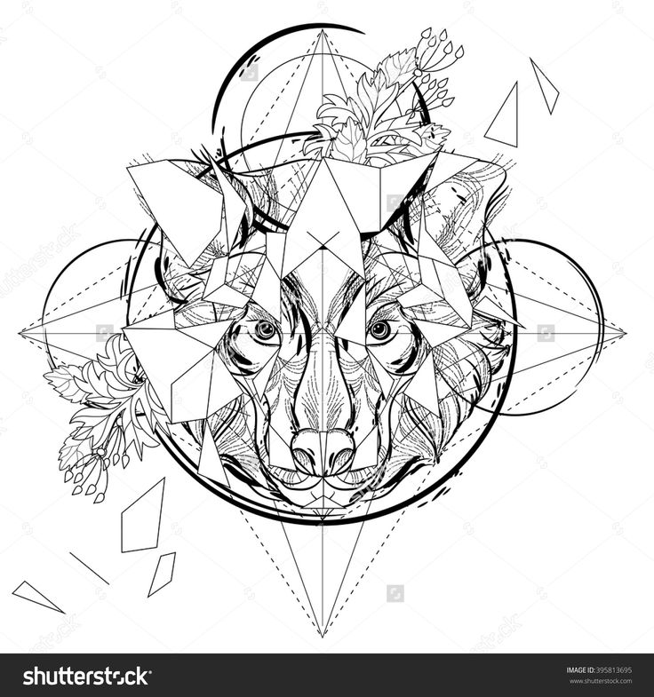 Animal Head Triangular Icon Geometric Trendy Line Design Vector Illustration Ready For Tattoo Or Coloring Book Wolf Low Poly Sketch Hand Drawn