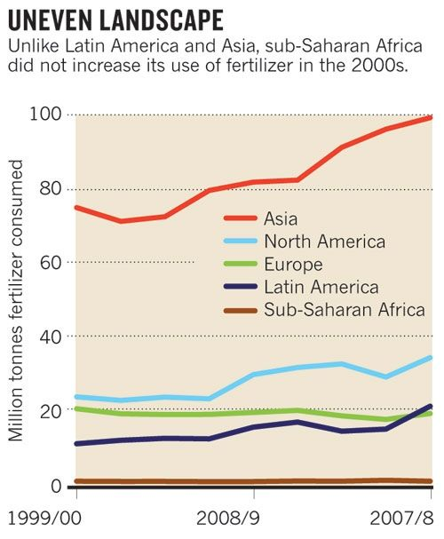 a recent Nature news article postures soil fertility as vital to food security and poverty alleviation in Africa