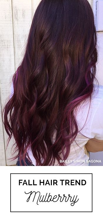 Best 25 Dark Purple Highlights Ideas On Pinterest Dark