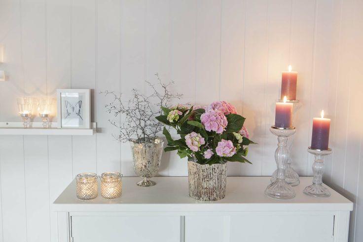 Corokia og rosa potterose - landlig interiørstil: http://www.mestergronn.no/blogg/landlig-interiorstil/
