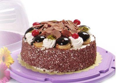 suport si tava tort