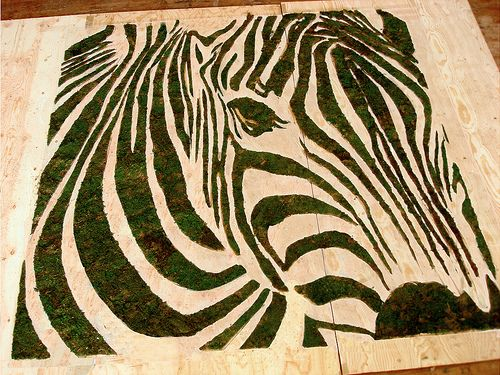 moss graffiti zebra moss graffiti pinterest moss. Black Bedroom Furniture Sets. Home Design Ideas
