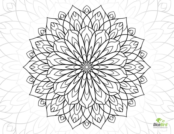 dahlia flower coloring pages coloring pages