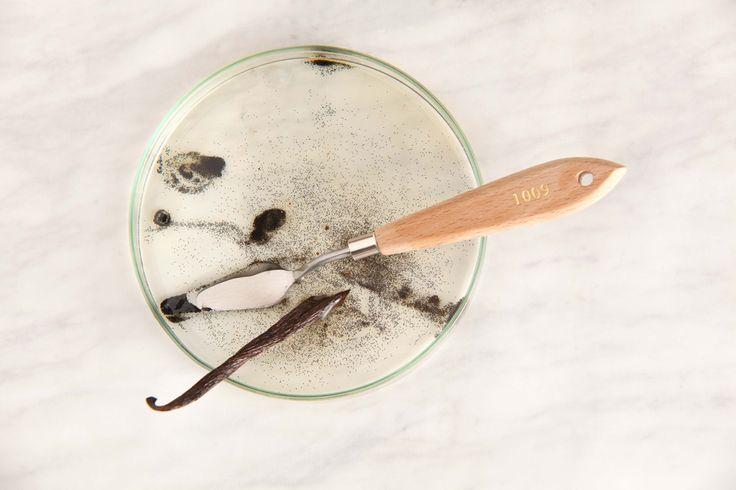 SKOON.   Vanilla Blood   Body Oil  http://www.skoonskin.co.za/