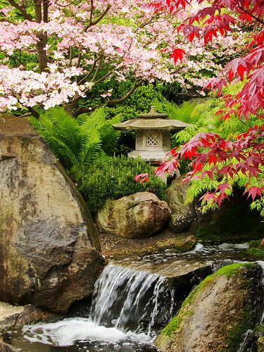 Japanese Garden with a wonderful balance of colors and textures, natural and manmade,  stone and living things.