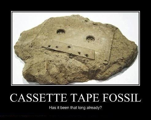 tape fossil
