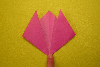 Tulpe falten 5