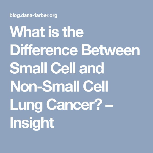 What is the Difference Between Small Cell and Non-Small Cell Lung Cancer? – Insight