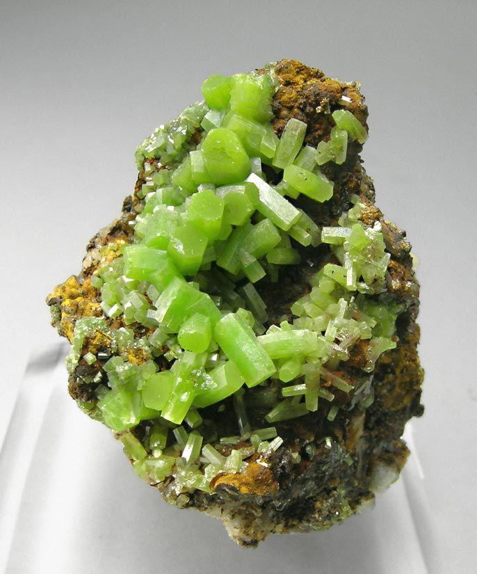 Green Gem Asparagus: Pyromorphite Mineral Specimen