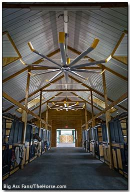 Air Movement In Horse Barns