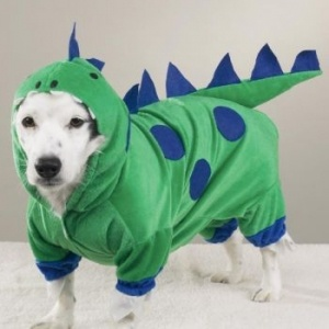 Dog Costumes: Dogs, Halloween Costumes, Casual Canine, Pet, Dogzilla Dinosaur, Dog Costumes, Dinosaurs, Animal