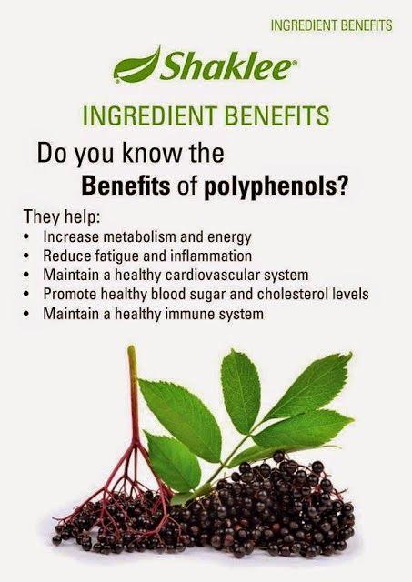 Hasil carian imej untuk poliphenol polyphenol fruit muscadine