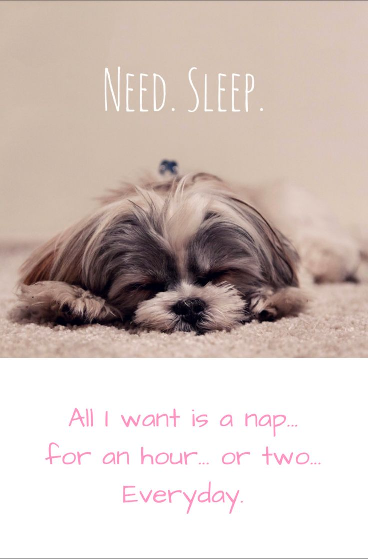 All I want is a nap... for an hour... or two... Everyday. #mombloggers #tiredmoms #motherhood #momlife