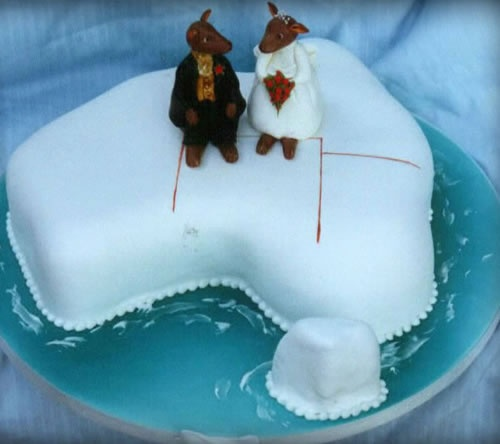 157 Best Images About Australian Animal Cakes On Pinterest