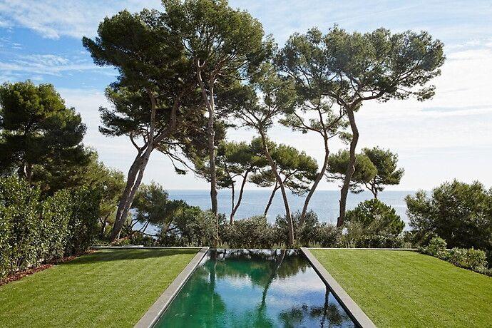 Trädgård - Franska Rivieran
