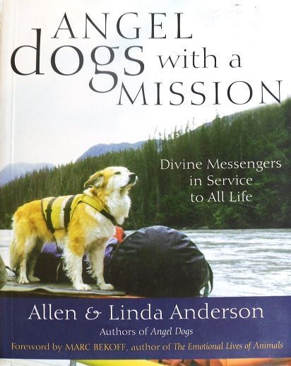 * ANGEL DOGS WITH A MISSION * Allen & Linda Anderson *