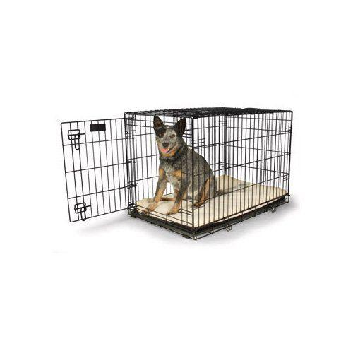 Dog Training Treat Pouch Petco