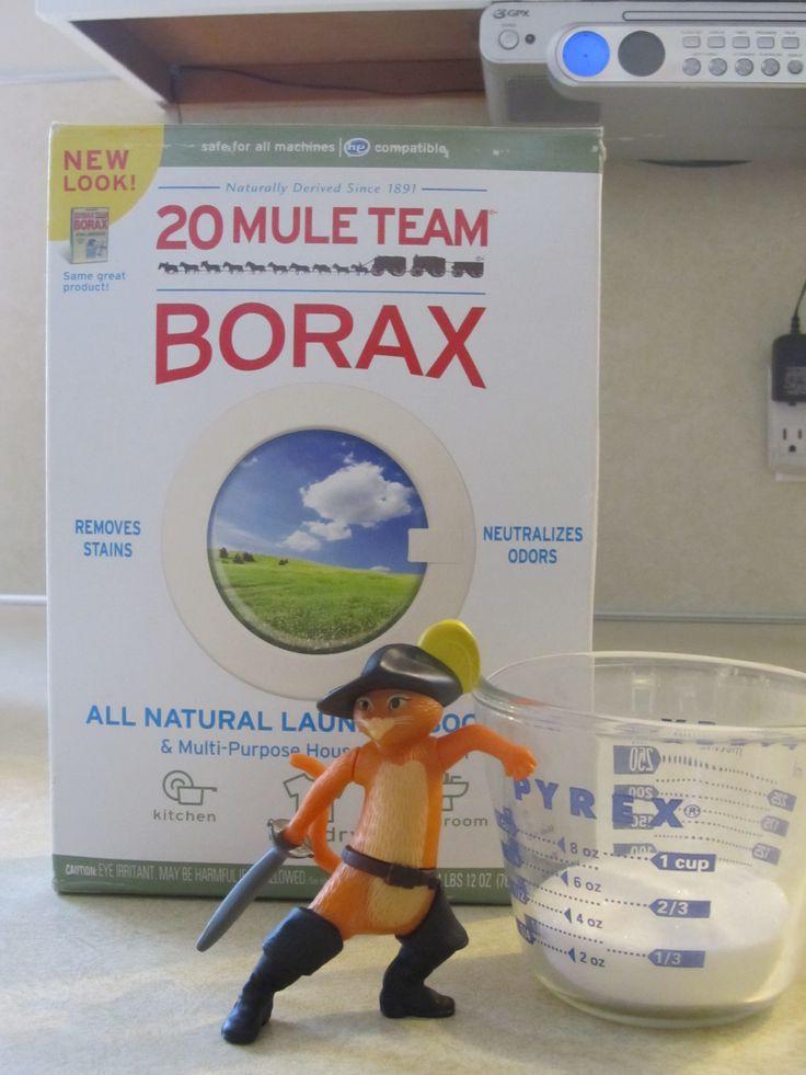 Borax Ant Killer Step 2