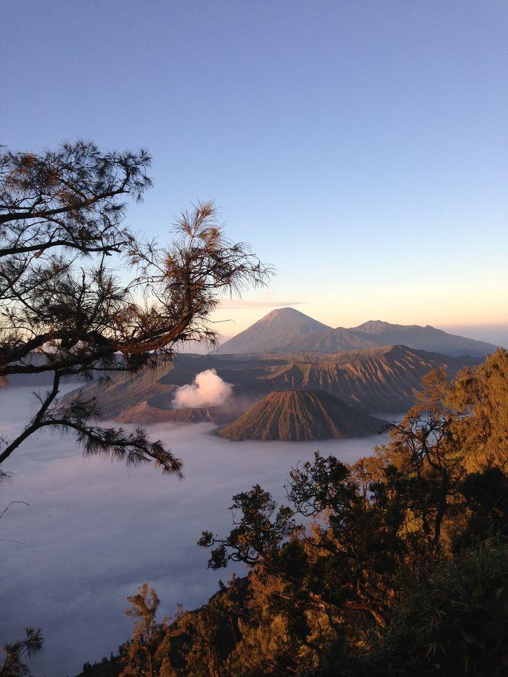 Mountain Bromo - Panjakan, Jatim