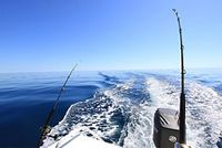 The Right Rod For Deep Sea Fishing