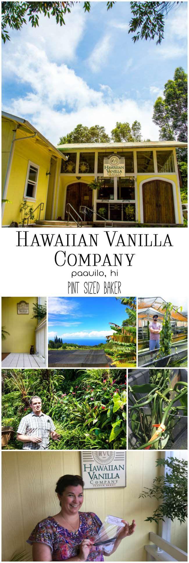 178 besten bildern zu kailua kona auf pinterest